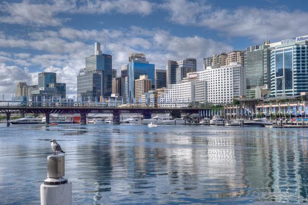 Harbour Dockside